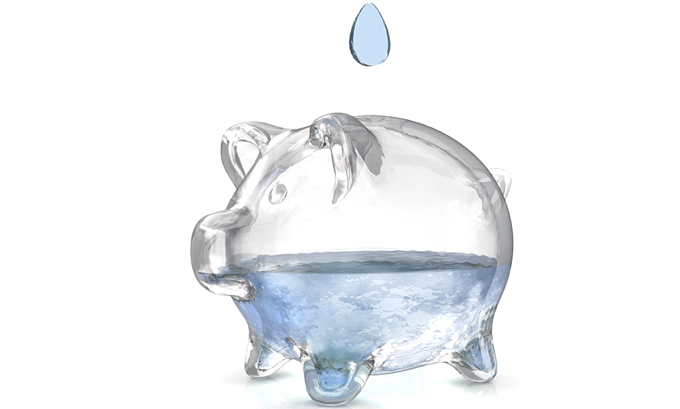 Water Is Money: How Do I Save It?